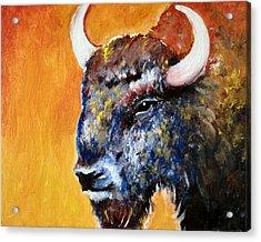 Bison Acrylic Print by Anastasis  Anastasi