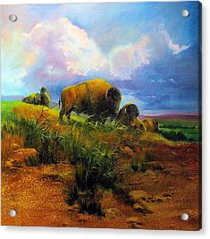 Bison Bluff Acrylic Print by Robert Carver