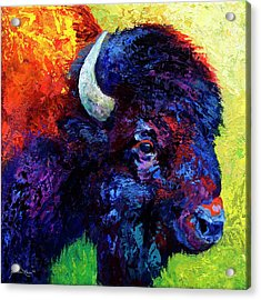 Bison Head Color Study IIi Acrylic Print