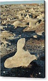 Bisti Badlands, Nm 39 Acrylic Print by Jeff Brunton