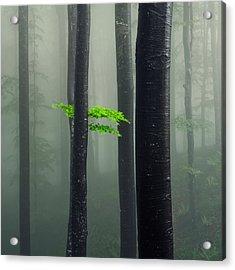 Bit Of Green Acrylic Print
