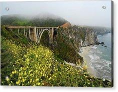 Bixby Bridge Acrylic Print by Harry Spitz