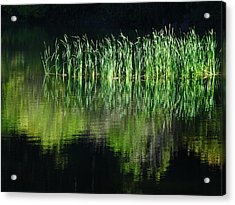 Black And Green Acrylic Print