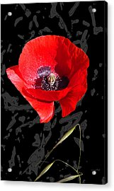 Black And Red Poppy Acrylic Print by Martine Affre Eisenlohr