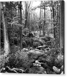 Black And White Babbling Brook Acrylic Print