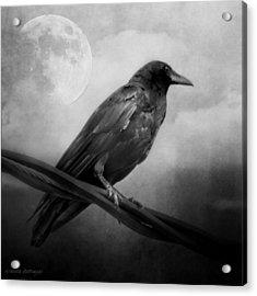 Black And White Gothic Crow Raven Art Acrylic Print