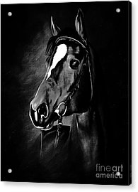 Black And White Horse Face Acrylic Print