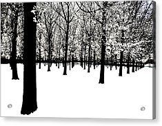 Acrylic Print featuring the photograph Black And White by Jim Dollar