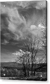 Black And White Landscape 5283 Acrylic Print