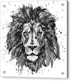 Black And White Lion Head  Acrylic Print