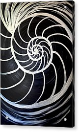 Black And White Nautilus Spiral Acrylic Print
