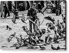 Black And White Of Boy Feeding Pigeons In Sarajevo, Bosnia And Herzegovina  Acrylic Print