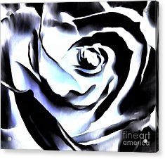 Acrylic Print featuring the photograph Black And White Rose - Till Eternity by Janine Riley
