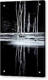 Black And White Winter Thaw Relections Acrylic Print