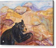 Black Bear Cub Acrylic Print by Ellen Levinson
