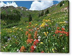 Acrylic Print featuring the photograph Black Bear Pass Landscape by Cascade Colors