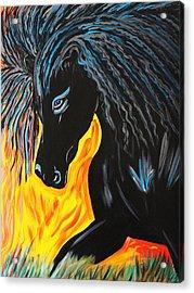 Black Beauty Acrylic Print by Nora Shepley