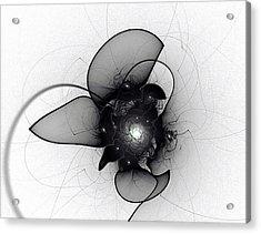 Black Bloom Acrylic Print
