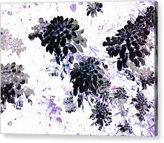 Black Blooms I Acrylic Print