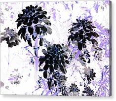 Black Blooms I I Acrylic Print