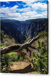 Black Canyon Of The Gunnison First Look Acrylic Print