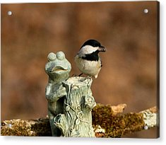 Black-capped Chickadee And Frog Acrylic Print