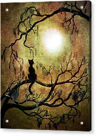 Black Cat And Full Moon Acrylic Print by Laura Iverson