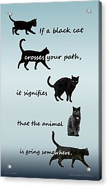 Acrylic Print featuring the digital art Black Cat Crossing by Ivana Westin