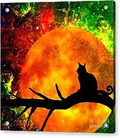 Black Cat Harvest Moon Acrylic Print