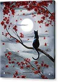 Black Cat In Silvery Moonlight Acrylic Print by Laura Iverson
