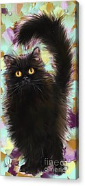 Black Cat Acrylic Print by Melanie D