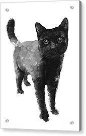 Black Cat Watercolor Painting  Acrylic Print by Joanna Szmerdt