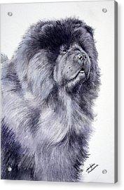 Black Chow Chow  Acrylic Print