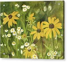 Black-eyed Susans In A Field Acrylic Print by Laurie Rohner