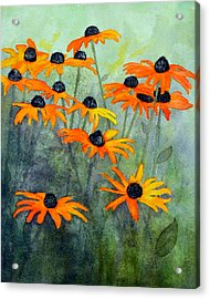 Black Eyed Susans Acrylic Print by Moon Stumpp