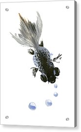Black Fish Acrylic Print by Suren Nersisyan