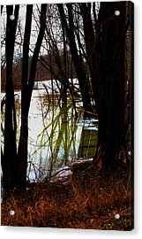 Black  Forest -  Image  4597 Acrylic Print