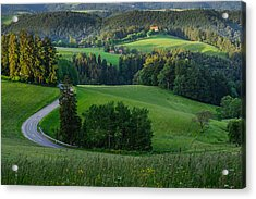 Black Forest Morning Acrylic Print