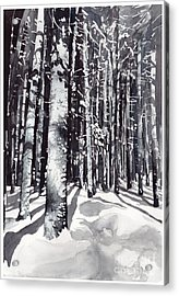 Black Forest Watercolor Acrylic Print