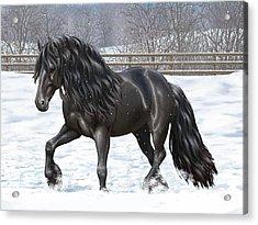 Black Friesian Horse In Snow Acrylic Print