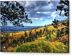 Acrylic Print featuring the photograph Black Hills Autumn by Fiskr Larsen