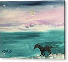 Black Horse Follows The Moon Acrylic Print