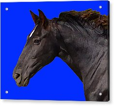Acrylic Print featuring the digital art Black Horse Spirit Blue by Jana Russon