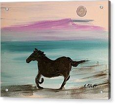 Black Horse With Moon Acrylic Print