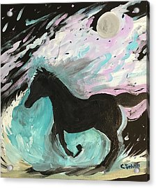 Black Horse With Wave Acrylic Print