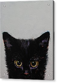 Black Kitten Acrylic Print by Michael Creese