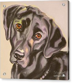 Black Lab Aint No Cure For Love Acrylic Print by Susan A Becker