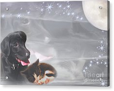Black Lab And Kitten Collage Acrylic Print by Judy Brand