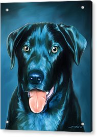 Black Lab Acrylic Print by Michael Spano