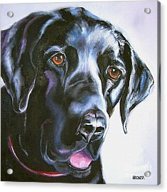 Black Lab No Ordinary Love Acrylic Print by Susan A Becker